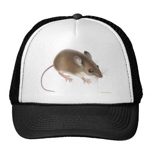 Gorra del ratón de campo