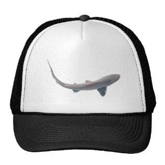 Gorra del tiburón de las lijas