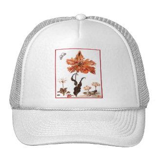 Gorra del tulipán del loro