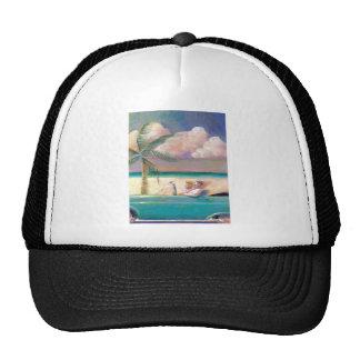 Gorra del viaje por carretera de la Florida
