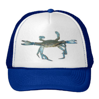 Gorra enojado del cangrejo