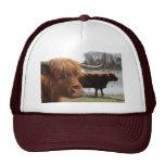 Gorra escocés del ~ del ganado de la montaña