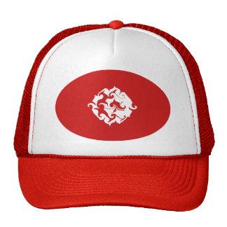 Gorra Gnarly de la bandera de Túnez