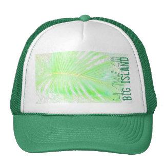 Gorra grande de Hawaii de la palma de la isla