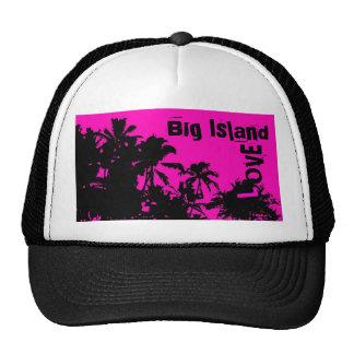 Gorra grande de la palma del amor de la isla