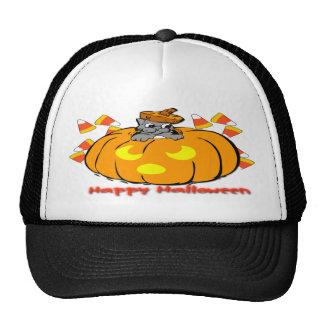 Gorra lindo de la calabaza de Halloween del gatito