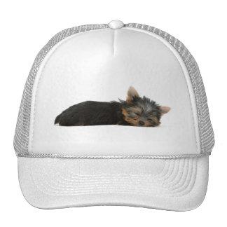 Gorra lindo de la foto del perro de perrito de Yor