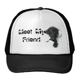 Gorra lindo del perrito