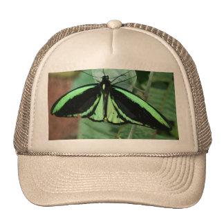 Gorra: Mariposa verde Gorro De Camionero