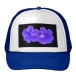 Gorra, Morninglories flotante púrpura 5226