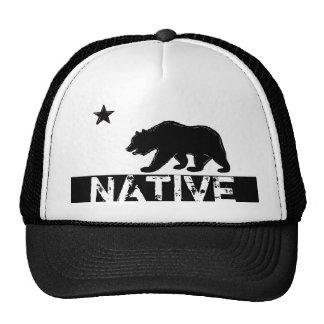 Gorra nativo del símbolo de la bandera del estado