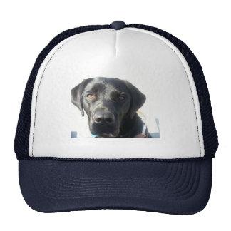 Gorra negro del laboratorio