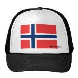 Gorra noruego de la bandera