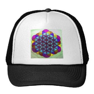 Gorra oscuro púrpura