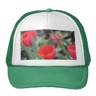 ¡Gorra para los jardineros!