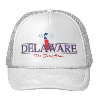 Gorra patriótico de Delaware