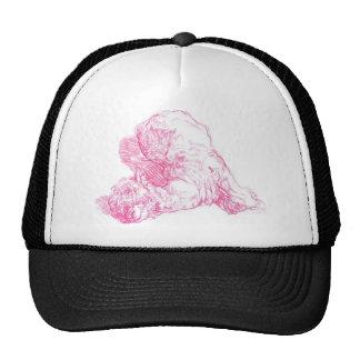Gorra perezoso de la alpaca