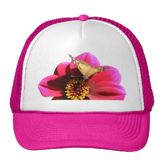 Gorra pintado americano del ~ de la señora