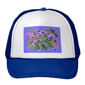 gorra púrpura de los asteres
