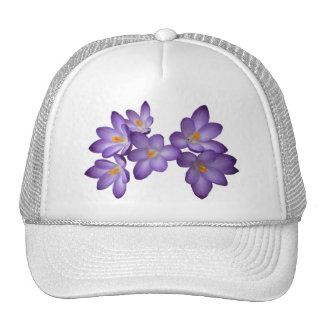 Gorra púrpura del azafrán