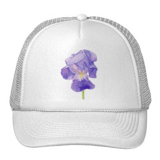 Gorra púrpura del iris