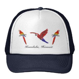 Gorra rojo del Macaw