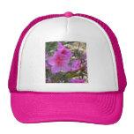 Gorra rosado de las flores de las azaleas