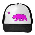 Gorra rosado de neón del oso de la bandera de Cali