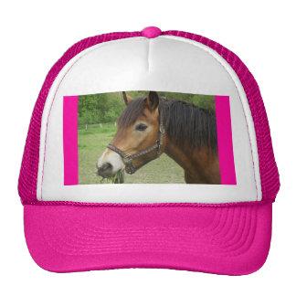 Gorra rosado del caballo