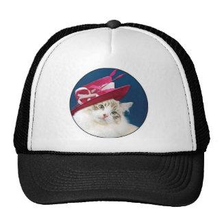 gorra rosado del gato