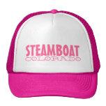 Gorra rosado simple de Steamboat Springs Colorado