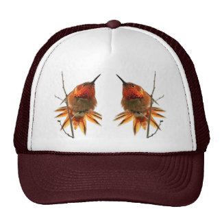 Gorra rufo de los colibríes