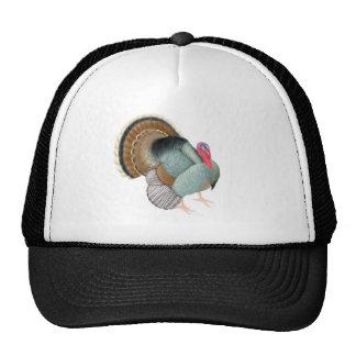 Gorra salvaje del camionero de Tom Turquía