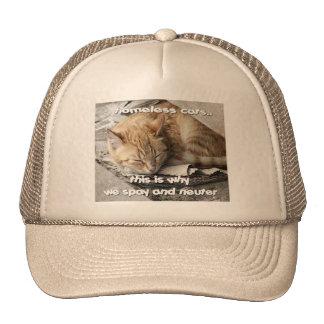 Gorra sin hogar del camionero de los gatos