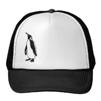 Gorra solitario del pingüino N3