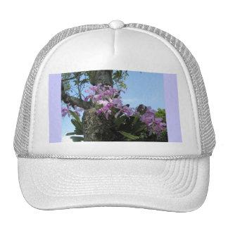 Gorra tropical del florista de la orquídea