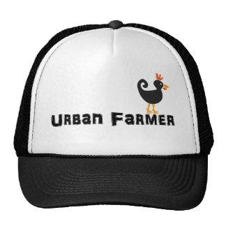 Gorra urbano del pollo del granjero