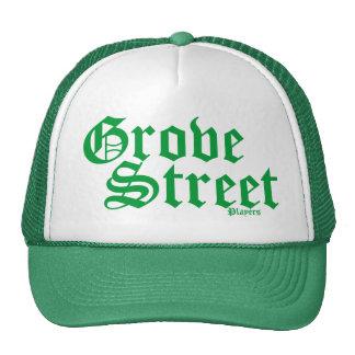 Gorra verde afortunado del camionero de la calle d
