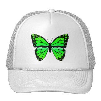 Gorra verde de la mariposa