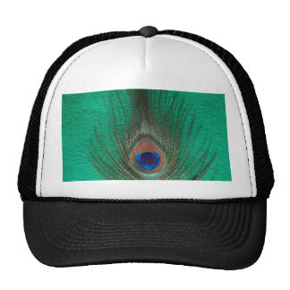 Gorra verde de la pluma del pavo real