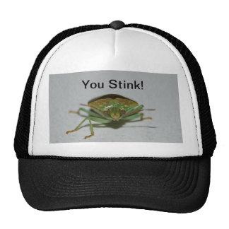 Gorra verde del insecto del hedor