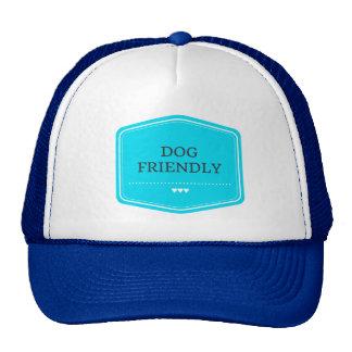 Gorras amistosos de la malla de la tienda del