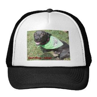 Gorras con los retratos del perro
