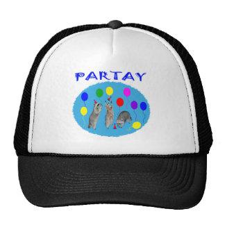 Gorras de Partay
