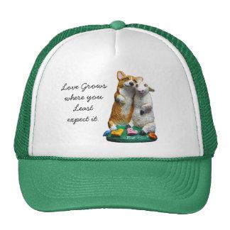 Gorras del Corgi Galés del Pembroke