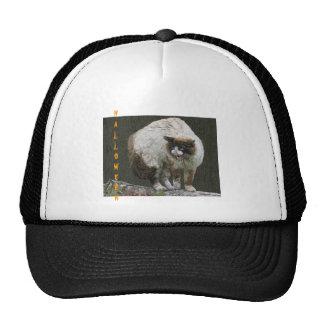 Gorras del gato de Halloween
