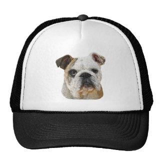 Gorras ingleses del dogo