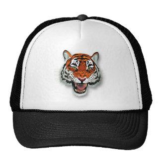 Gorras principales del tigre
