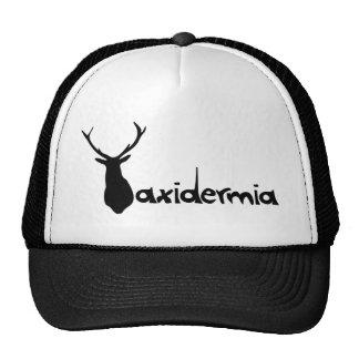 gorrataxidermia1 mesh hats
