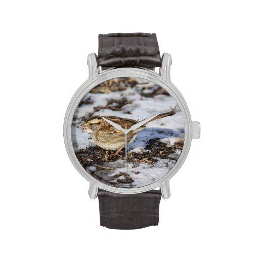 gorrión Blanco-throated Relojes De Mano